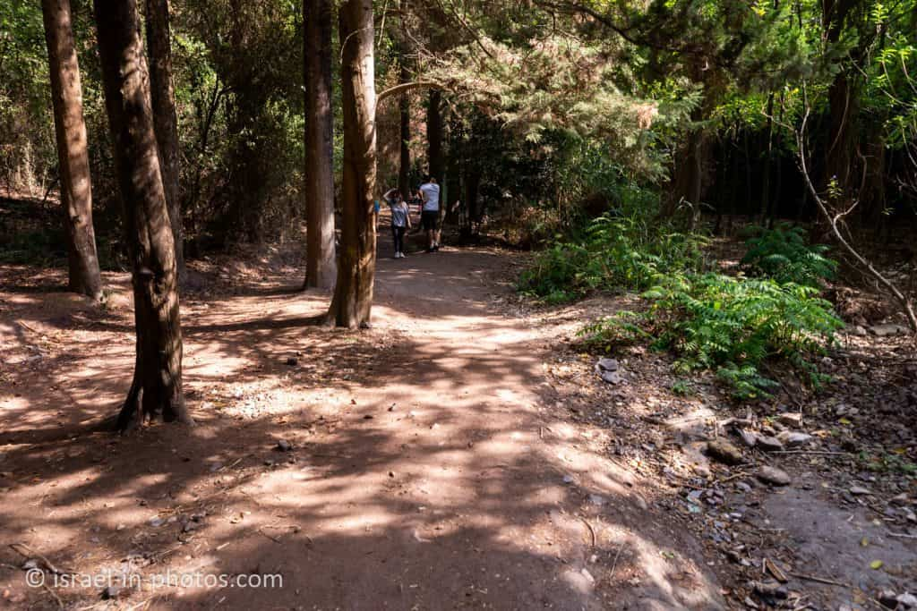 The wheelchair-accessible trail at Nahal HaShofet