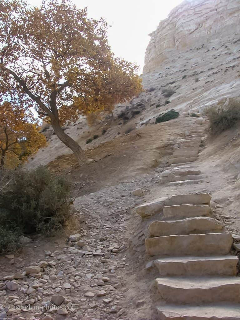 The Ladder Trail