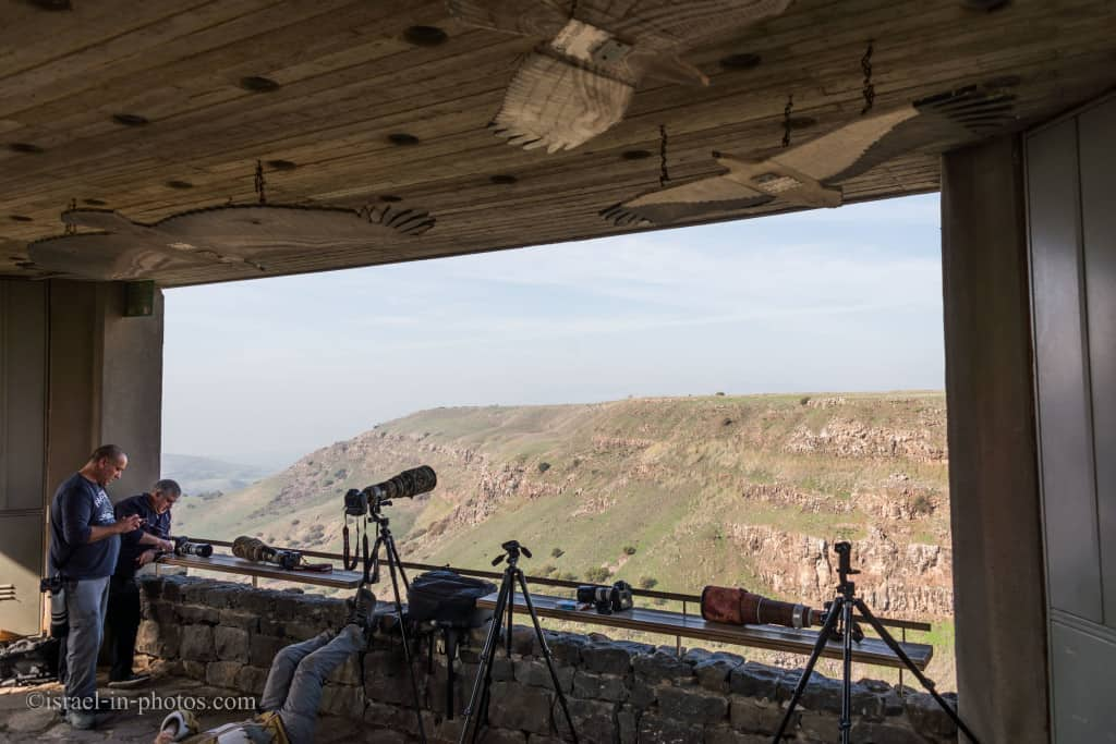 Vulture Lookout at Gamla Nature Reserve