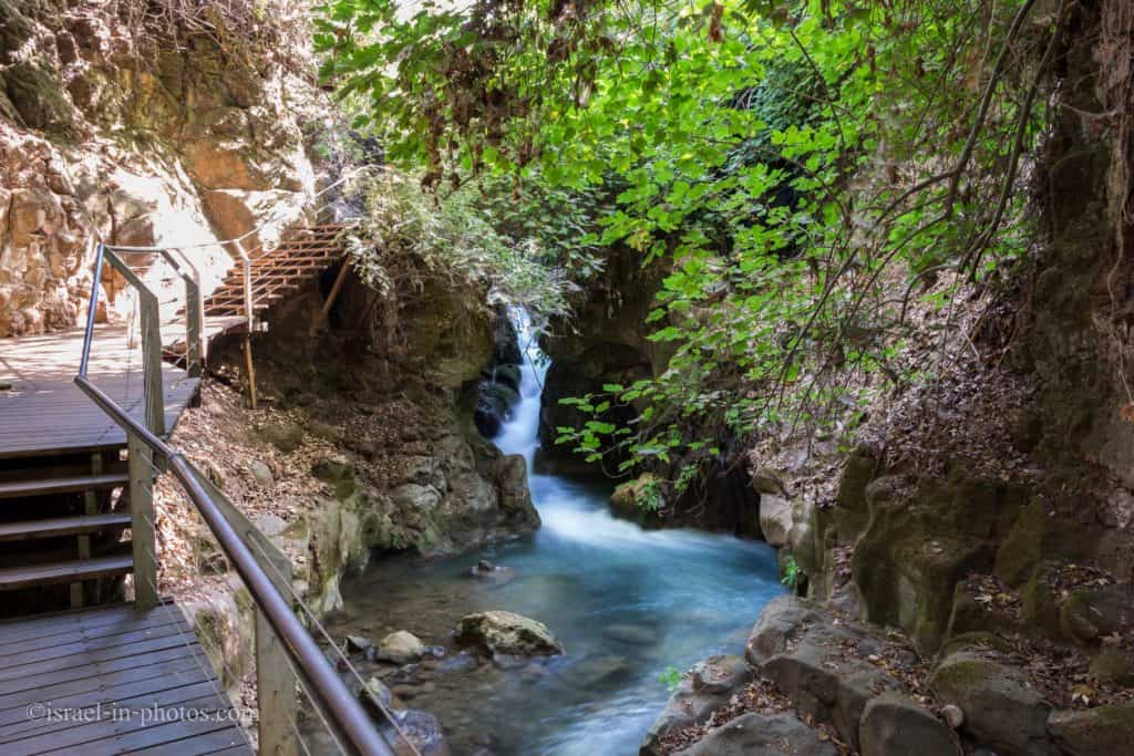 Banias Suspended Trail