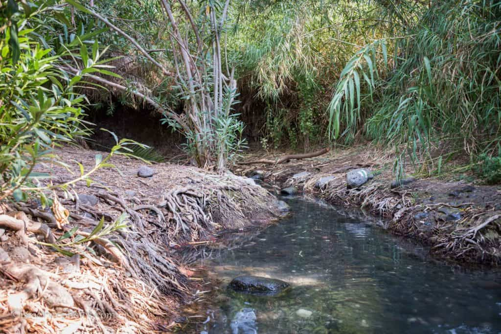 The beginning of the Wet Route at Majrase – Betiha Nature Reserve