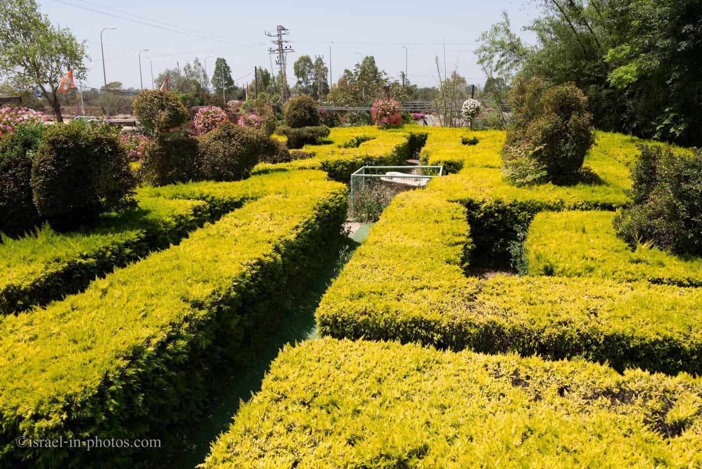 Visiting Utopia Orchid Park, Israel