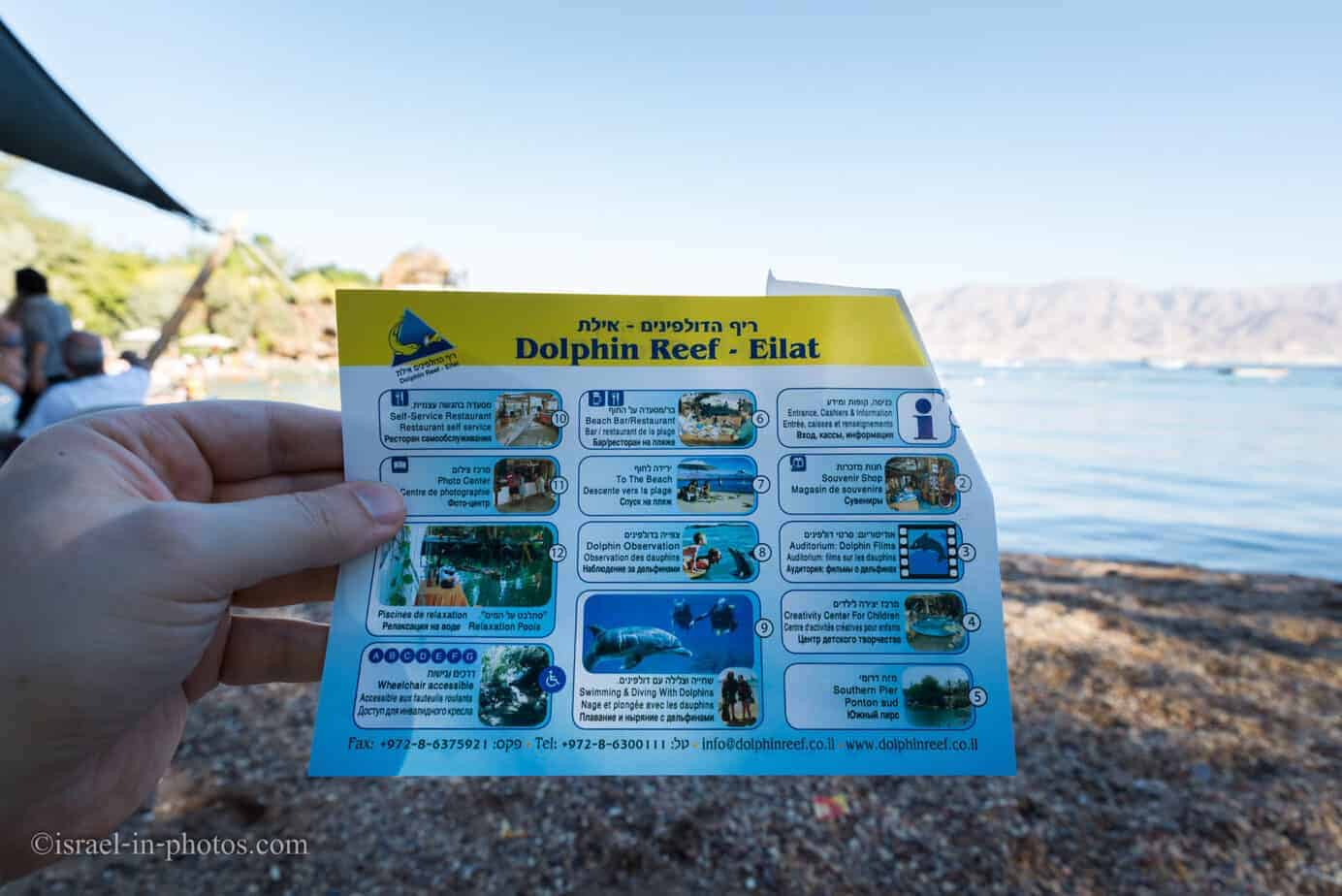 At Dolphin Reef in Eilat, Israel