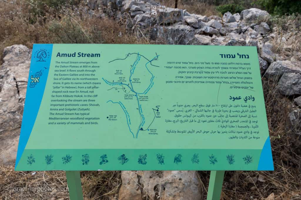 At Amud Stream Nature Reserve in Northern Israel