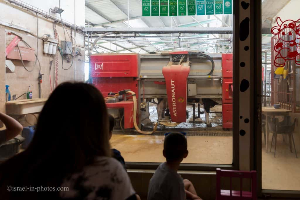 Automatic Milking