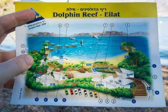 Dolphin Reef Map