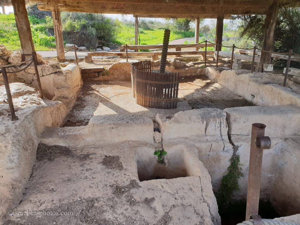 Mosaic Wine Press and the pits