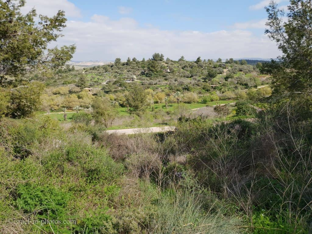 The valley and the trails in Neot Kedumim