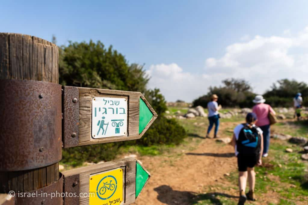 The green trail at Horvat Burgin