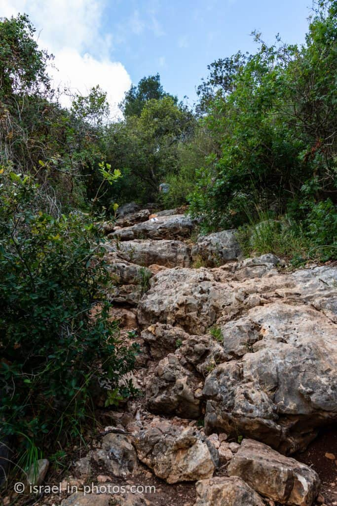 The black trail at Finger Cave Trail