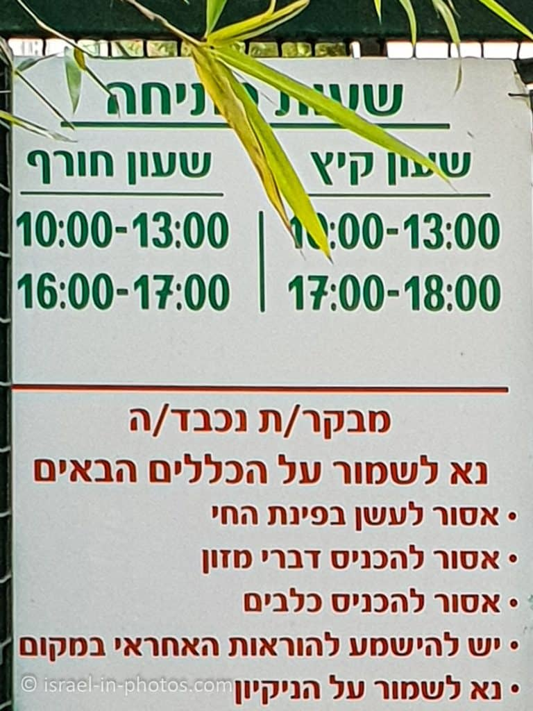 Opening Hours of the zoo
