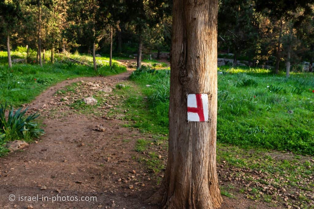 Red trail marking