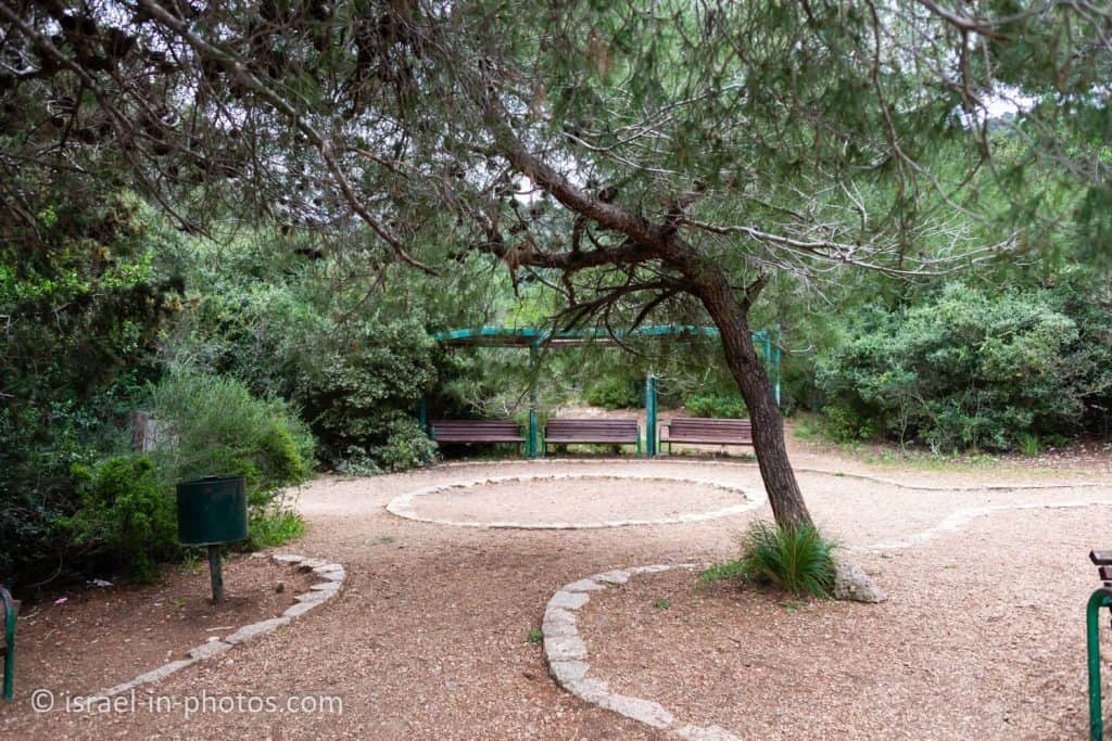 Southern viewpoint at Nesher Park