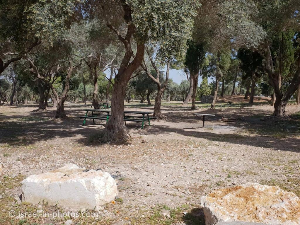 Picnic area in the western area of Ayalon-Canada Park