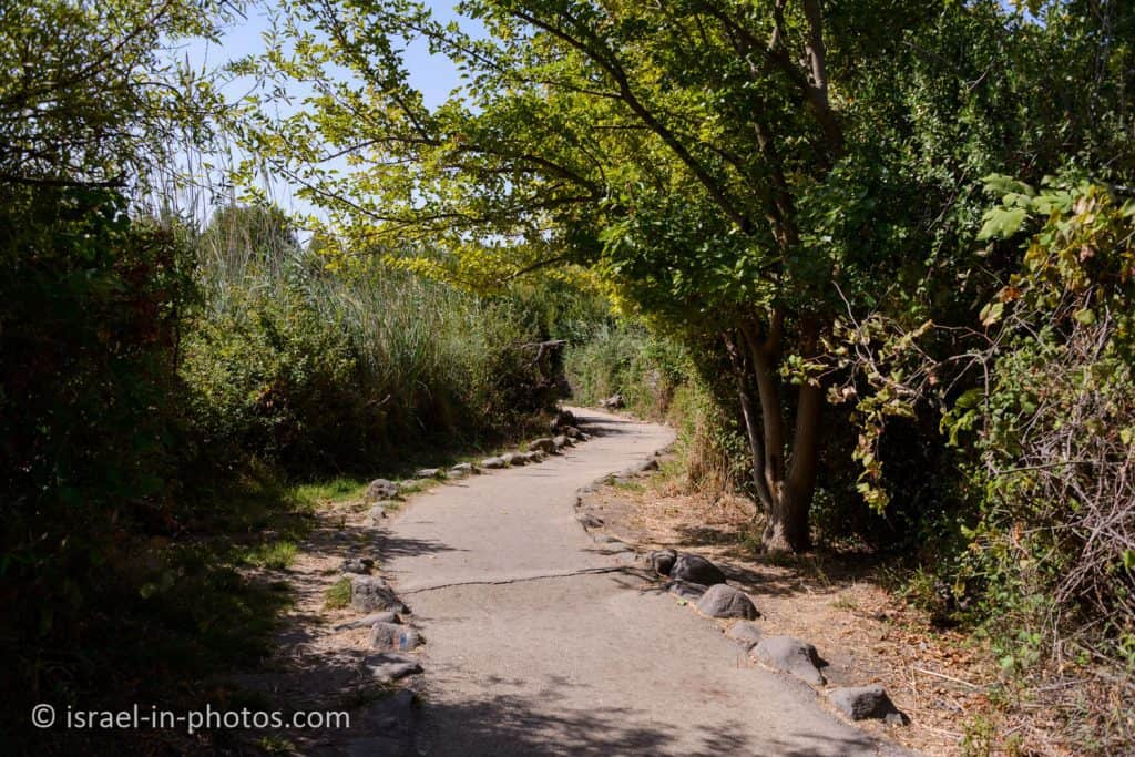 Accessible loop trail at Snir Stream Nature Reserve