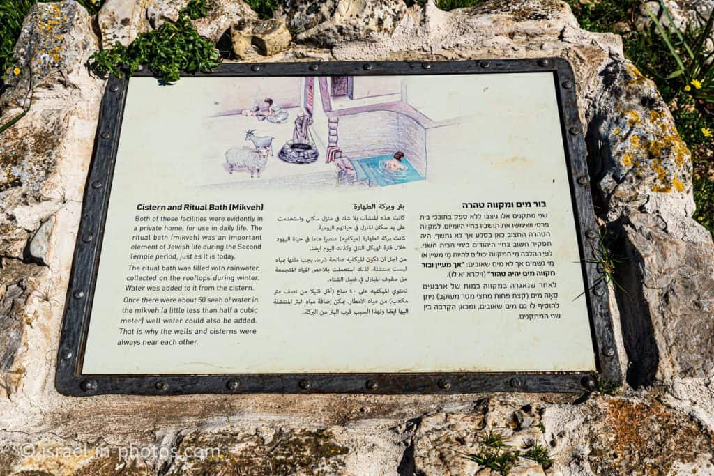 Cistern and Mikveh